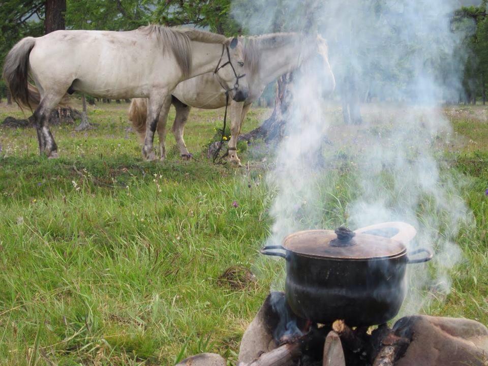 Bivouac cuisine