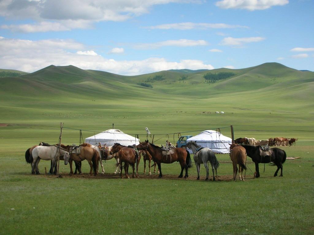 chez le cavalier mongol
