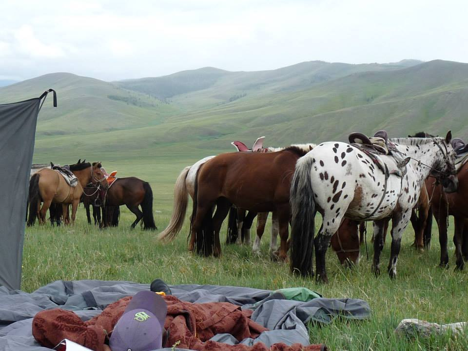 traversée-steppes-mongoles