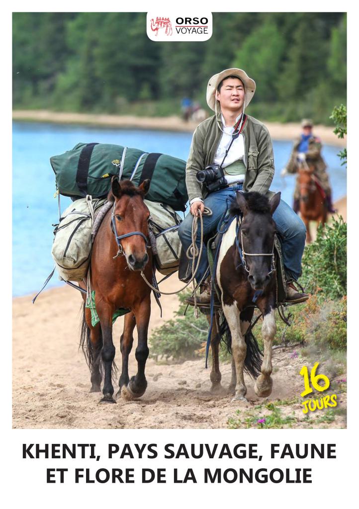 horse-trip-3